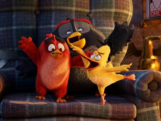 Angry Birds trio