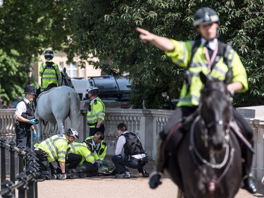 A man is detained by police near Buckingham Palace
