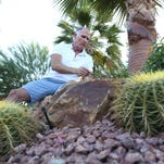Randy Roberts on desert friendly landscaping