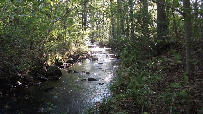 The town of Dartmouth and the Dartmouth Natural Resources Trust are moving to accquire a parcel of land adjacent to Destruction Brook Woods for conservation.
