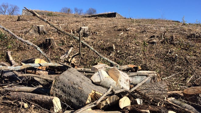 A pile of stumps sits at the bottom of Fort Negley after the Metro Parks & Recreation department recently led the removal of trees from the site.
