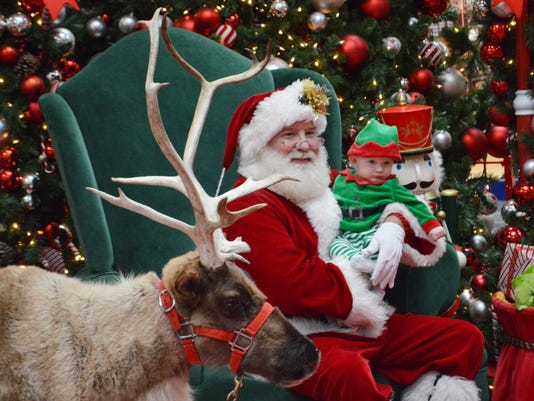 ANI Reindeer at Mall