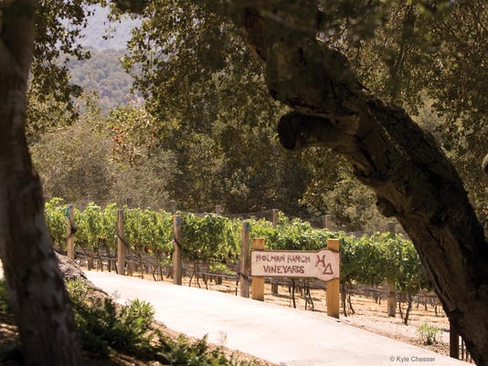 vineyard_sign_chesser