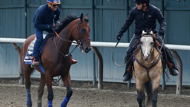 Kentucky Derby and Preakness Stakes winner American Pharoah, left, with exercise rider Jorge Alvarez up, is met by assistant trainer Jimmy Barnes on a pony, after jogging around the track at Belmont Park, Wednesday, June 3, 2015, in Elmont, N.Y. American Pharoah will try for the Triple Crown when he runs in Saturday's 147th running of the Belmont Stakes horse race.