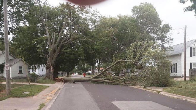 A felled tree from the storm Monday blocks a street in Pekin.