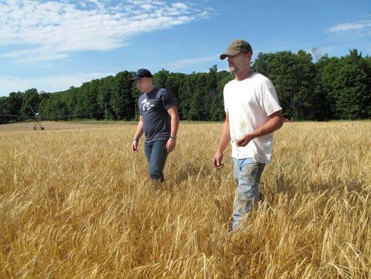 Exchange-Growing Barley (2)