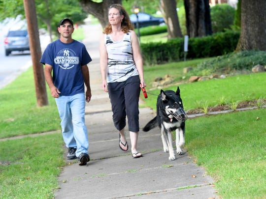 Apollo, a German shepherd, walks with his owners, Scott and Heather Fox, on their evening walk around their neighborhood in Waynesboro on July 20, 2016.