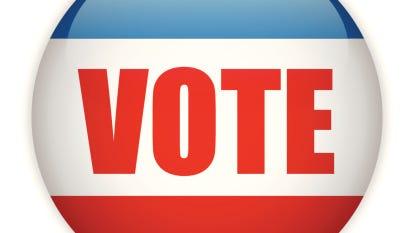 United States Election Vote Button