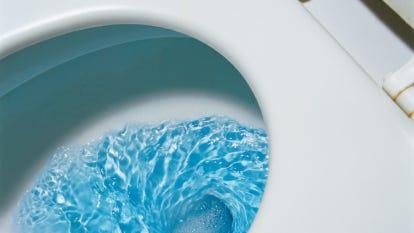 Flushing Toilet