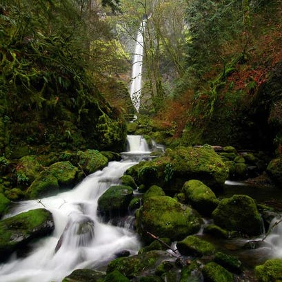 Elowah Falls thunders during spring in the Columbia