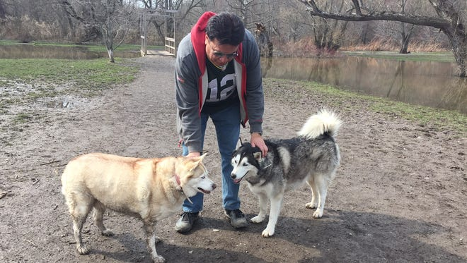 Sasha, left, and Niko with owner Frank Palermo in the dog park at Ellison Park.
