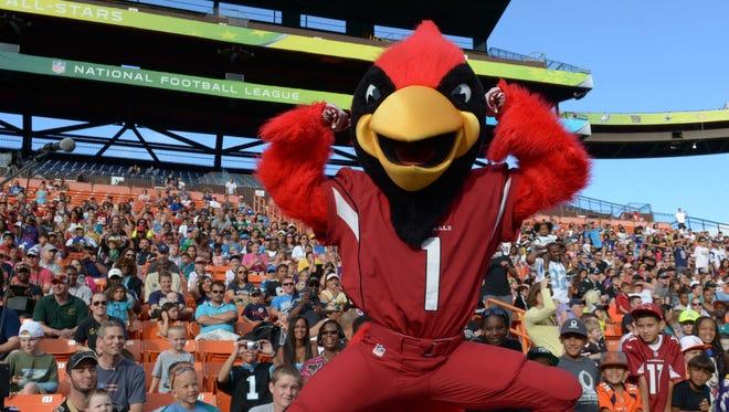 January 25, 2014: Arizona Cardinals mascot Big Red poses during the 2014 Pro Bowl Ohana Day at Aloha Stadium.