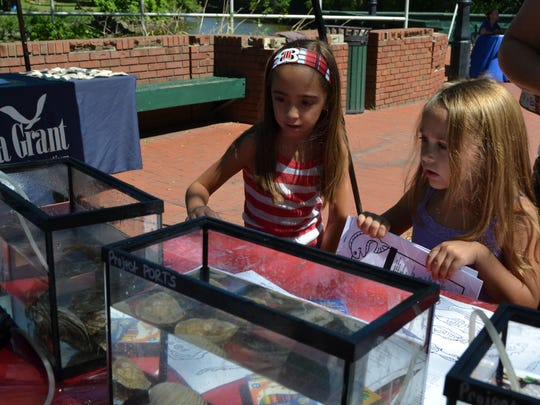 Aviana Piccioni, 8, and Mikayla Piccioni, 5, both of Upper Deerfield take a close look at sea creatures while visiting Cohansey Riverfest on Saturday. Photo/Jodi Streahle