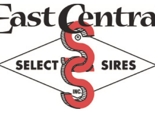WSF 0316 ECSS logo