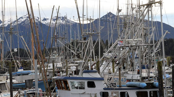 Masts rising from fishing vessels in Sitka, Alaska, partially block the view of mountains Monday, Jan. 20.  Temperatures this week in Alaska have been milder than many spots in the Lower 48.