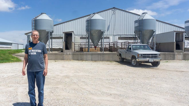 Dan Erickson stands in front of a hog finishing barn in Altona. Erickson has around 1,000 pigs that have been ready for market for almost two weeks -- and nowhere to send them.