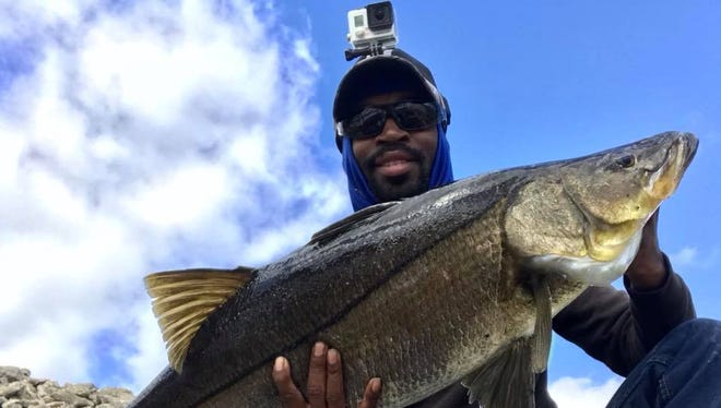 Kevin McCoy, of Port St. Lucie, caught and released this giant snook while fishing with a Live Target shad at the C-24 Spillway in Port St. Lucie on Monday. Snook season opened Thursday.