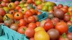 Farmers markets a big seasonal boost for Sussex farmers