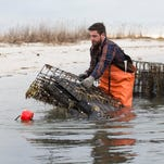 Forty North Oyster Farms wins APP Small Business Innovator of the Year