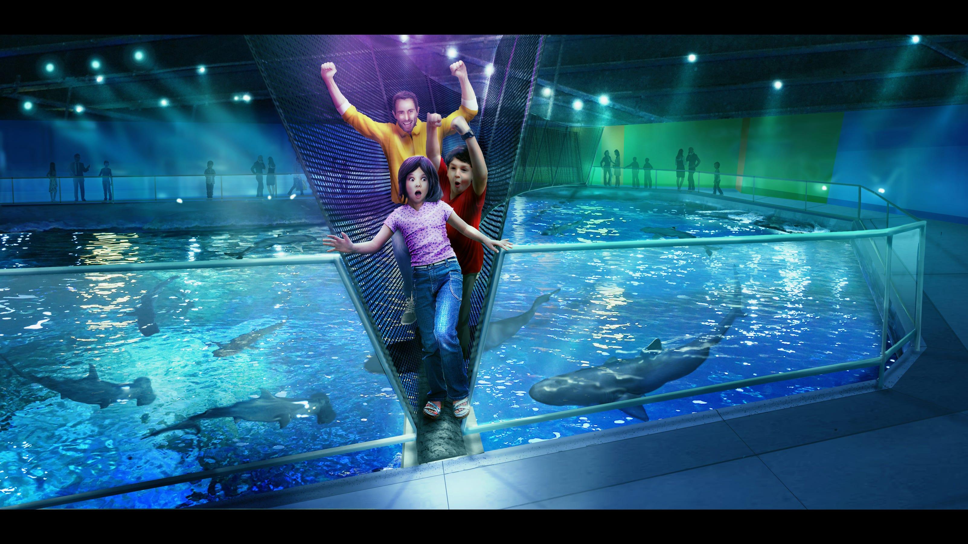 Newport Aquarium Adding Shark Bridge