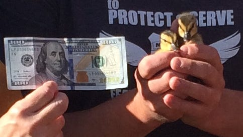 Many of the $100 bills signed by Benny are being used to pay it forward, such as this one found in a booth during the World Beat Festival and donated to Turtle Ridge Wildlife Center by Deborah Goldstein and Marty Surface.