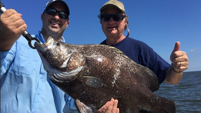 Big tripletail are providing plenty of action.