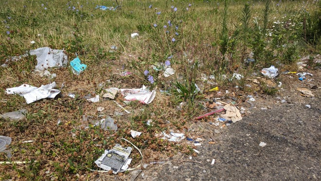 Trash along the side of Governor Printz Blvd. in Claymont.