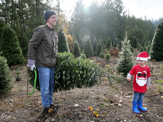 shortage driving up cost of christmas trees in kitsap nationwide - Cost Of Christmas Tree