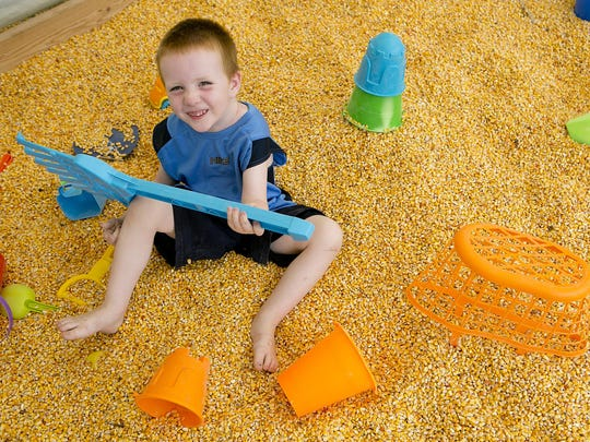 Alex White, 3, of Eleva plays in the corn seed sand