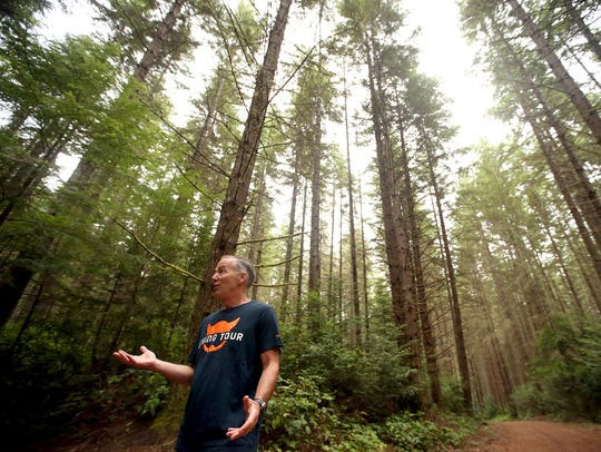Mark Schorn, a volunteer with the North Kitsap Trails Association, talks about trails in the Port Gamble Forest Heritage Park in 2017. The Kitsap County Parks Foundation is partnering with outdoor groups in its ask for funding from the Kitsap Public Facilities District to fund a mountain bike ride park and other amenities on the property.