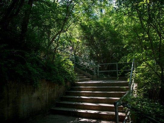 Wildlife Canyon at Cincinnati Zoo & Botanical Garden
