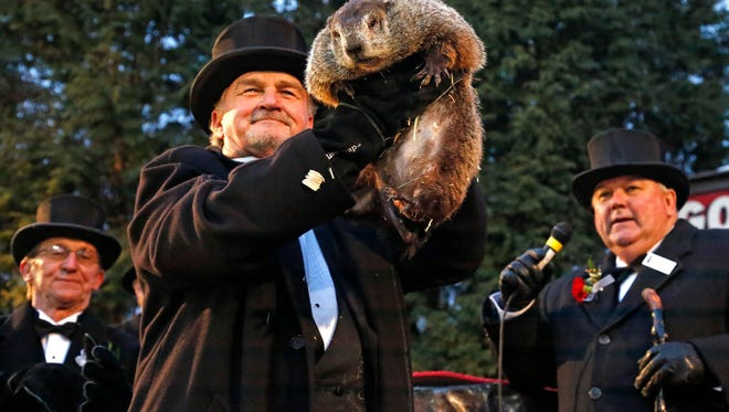 Groundhog Club handler John Griffiths, center, holds Punxsutawney Phil, the weather prognosticating groundhog, during the 131st celebration of Groundhog Day on Gobbler's Knob.