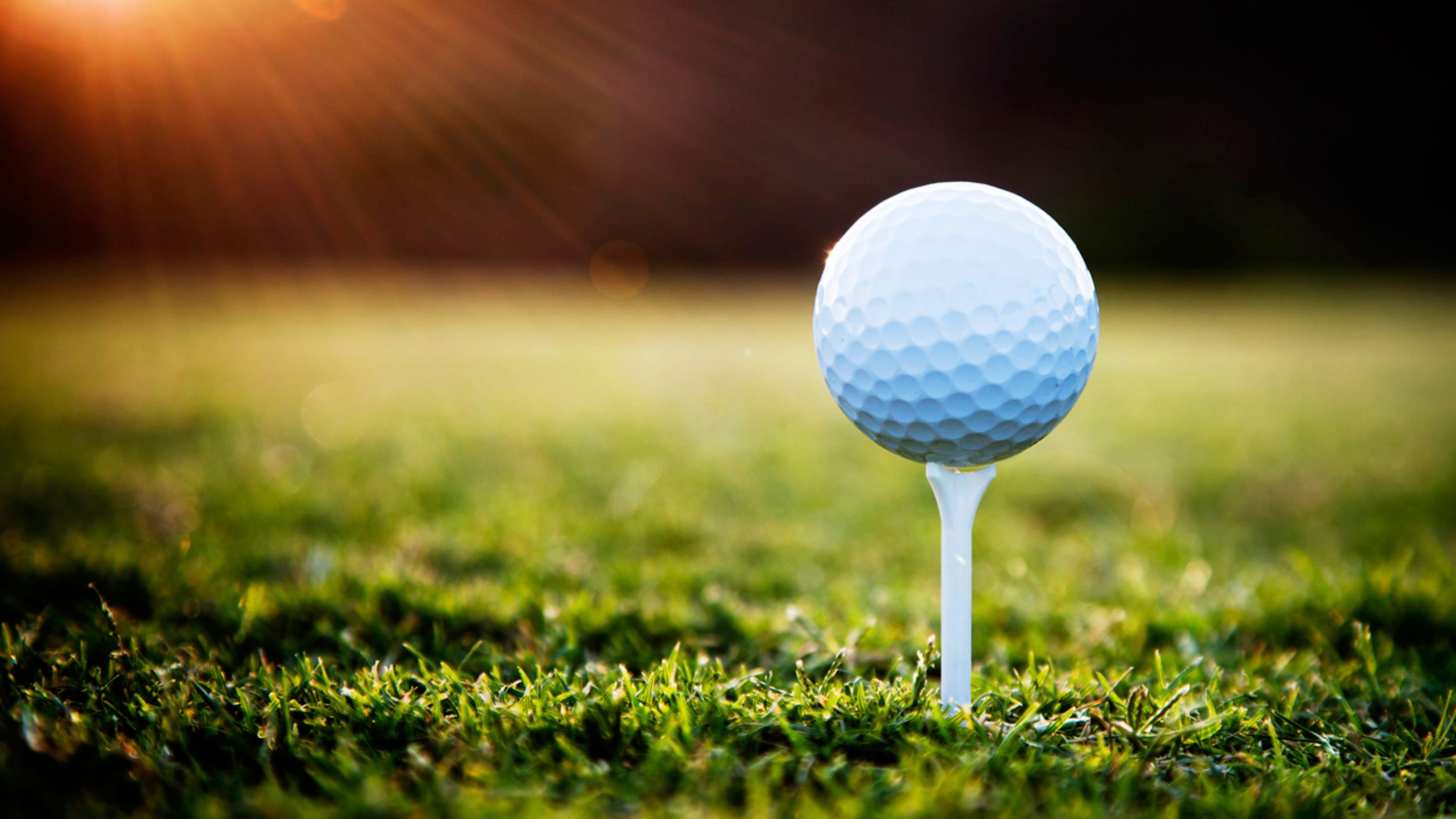 Algoma Ladies Golf host Par-tee. Green Bay Press Gazette For instance, on Hole 1 each player received two tees for par and one tee for bogie, ...