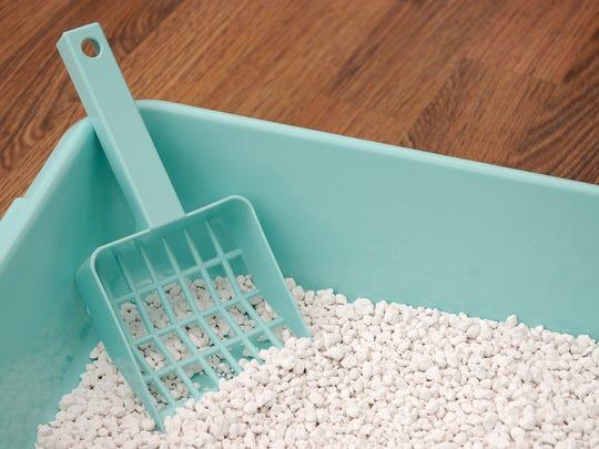 A scoop in a cat's litter box.Alternative image:
