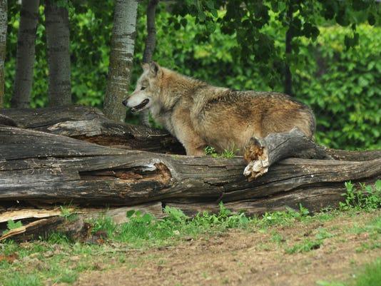 -OSH Menominee Park Zoo 052715 JS 01.jpg_20150527.jpg