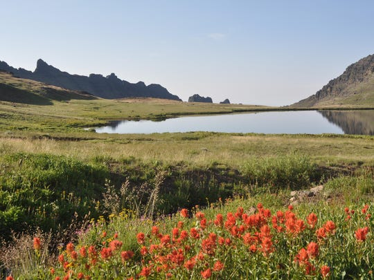 Wildhorse Lake paintbrush