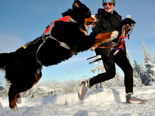 Outdoors Skijoring_Powe.jpg