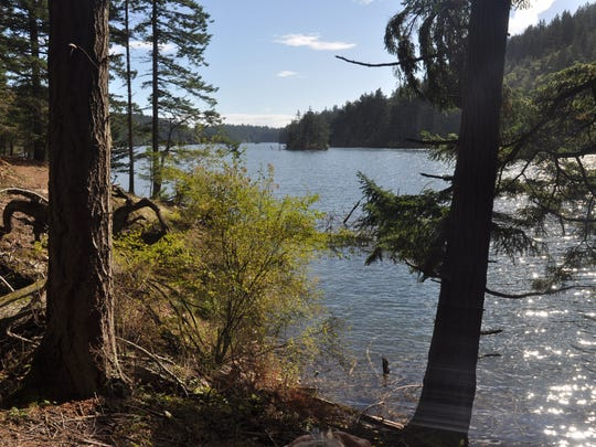 Perhaps the best easy hike in Moran State Park on Orcas Island is the nearly level 3.9-mile walk around Mountain Lake. The trail winds through amazingly mossy woods of giant red cedars and Douglas firs.