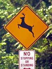 be alert for white-tailed deer with the arrival of