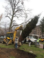 Workers plant holiday tree at Tibbits Park in White