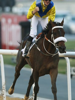 UAE-owned Mubtaahij, ridden by Christophe Soumillon, crosses the finish line to win the UAE Derby with the US$2,000,000 prize during the Dubai World Cup horse racing at the Meydan Racecourse in Dubai, United Arab Emirates, Saturday, March 28, 2015. (AP Photo/Kamran Jebreili)