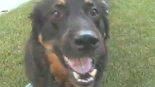 A photo taken from video shows Tucker.