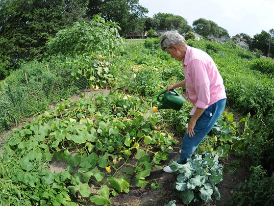 636374407126782673-02-GPG-gardening-SECOND-080217-JM-5114.jpg