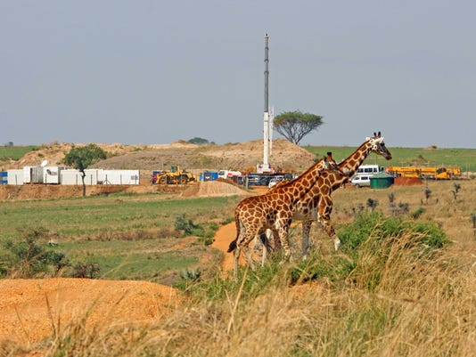 636622571475598871-Giraffes-and-rig-small-Paul-Mulondo-WCS-preview.jpeg