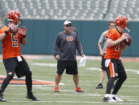 Ken Zampese (center) works with Bengals quarterbacks.