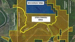 Steele Bayou Wildlife Management Area is expected to
