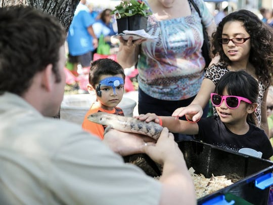 Attendants visit with a blue-tongue skink from Brownsville's Gladys Porter Zoo at the annual Earth Day-Bay Day on Saturday, April 9, 2016, at Heritage Park.