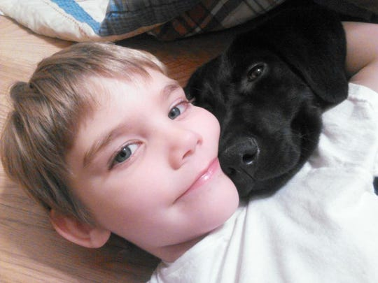 Lucien Gautreaux, 5, plays with his diabetes alert dog Shadow, a 7-month-old Labrador retriever.  BELOW: Jackson   is trained to alert Terri Lubaroff when her blood glucose levels are too high or too low.