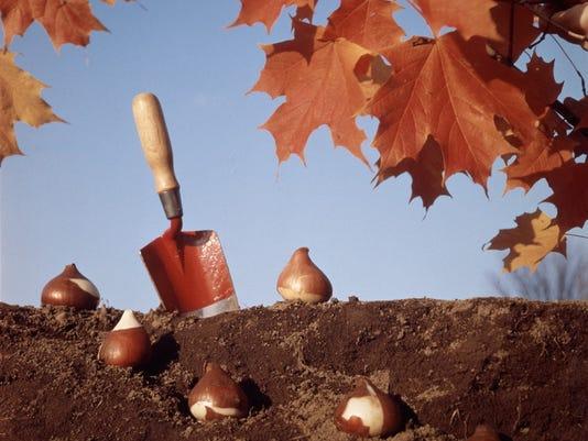 Get outside, start digging again and enjoy gardening.