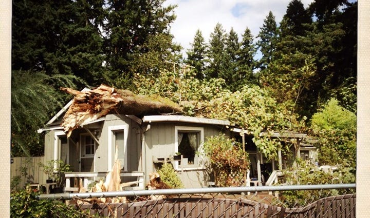 A tree fell on a house in Lake Oswego.
